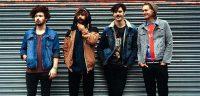 HABITATS band